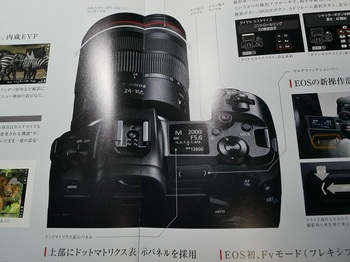 P1120957.JPG